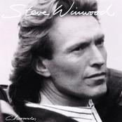 Steve Winwood: Chronicles