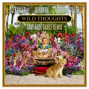Wild Thoughts (Dave Audé Dance Remix)