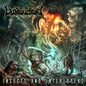Dissolution: Insects and Interlopers