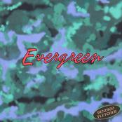 Bendigo Fletcher: Evergreen