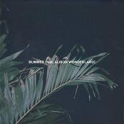 Chet Porter: Bummed (feat. Alison Wonderland)