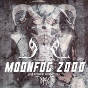 Moonfog 2000: A Different Perspective