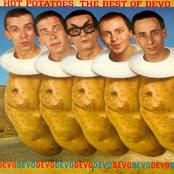 Devo: Hot Potatoes: The Best of Devo