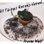 Dream Wulf: All Things Unconsidered