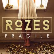 Fragile - Single