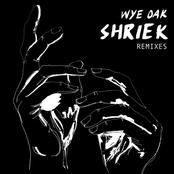 Shriek Remixes