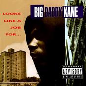 Big Daddy Kane: Looks Like A Job For...