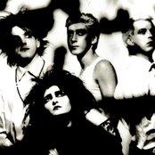 Siouxsie and the Banshees 76a762817550490db747b108f4e69ca6