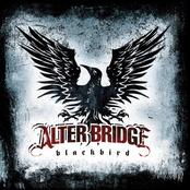 Blackbird (Bonus Tracks)