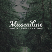 Muscadine Bloodline: Muscadine Bloodline