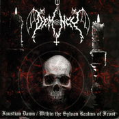 Faustian Dawn / Within The Sylvan Realms Of Frost