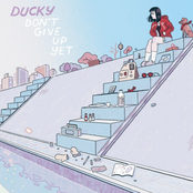 Ducky: Don't Give up Yet
