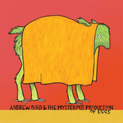 Andrew Bird: The Mysterious Production of Eggs