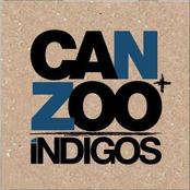 Can+Zoo Indigos