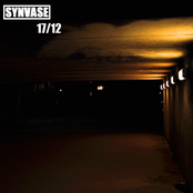 synvase