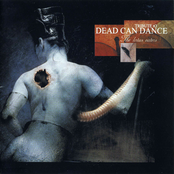 The Lotus Eaters: Tribute To Dead Can Dance