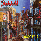 Freeworld: What It Is