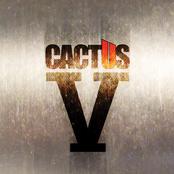 Cactus: V