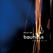 Bauhaus: Crackle