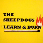 Learn and Burn