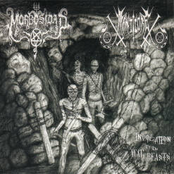 Invocation of the War Beasts Split
