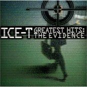 The Evidence (Greatest Hits)