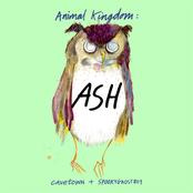 Animal Kingdom: Ash