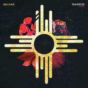 Transpose (Remixes)
