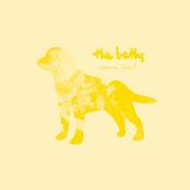 The Beths: Warm Blood