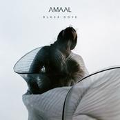 Amaal: Black Dove