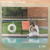 Dwynell Roland: A-OK - EP