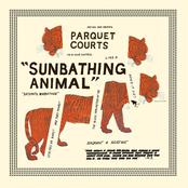 Parquet Courts: Sunbathing Animal