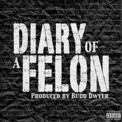 Diary Of A Felon