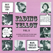 Fading Yellow vol 3