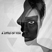 A Little of You
