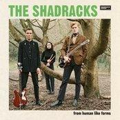 The Shadracks - From Human Like Forms Artwork
