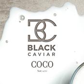 Black Caviar: Coco