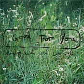 Porridge Radio: Good For You