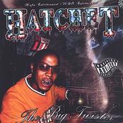 Hatchet: The Big Twister