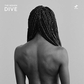 The Seshen: Dive