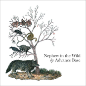 Advance Base: Nephew in the Wild (Deluxe Edition)