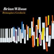 Brian Wilson: Brian Wilson Reimagines Gershwin