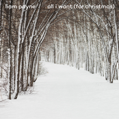 All I Want (For Christmas) - Single