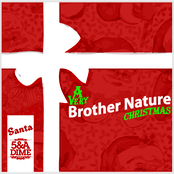 A Very Brother Nature Christmas
