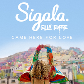 Sigala: Came Here for Love
