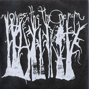 Wolves In The Throne Room [Demo]