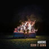 Aqueous: Burn It Down
