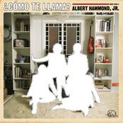 Albert Hammond Jr: Como Te Llama?