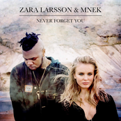 Never Forget You - Single