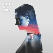 Ebonivory: Patting the Black Dog